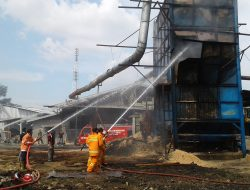 Damkar Beri Peringatan Keras ke Pabrik Kayu