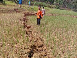 BPBD Siapkan Huntara Bagi Korban Tanah Bergerak